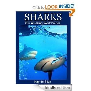 sharks amazing